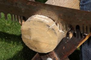 Lem kayu dan lem hpl Crona - crosscut saw fix e1625931455886